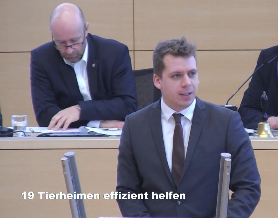 Tierheimen in Schleswig-Holstein effizient helfen